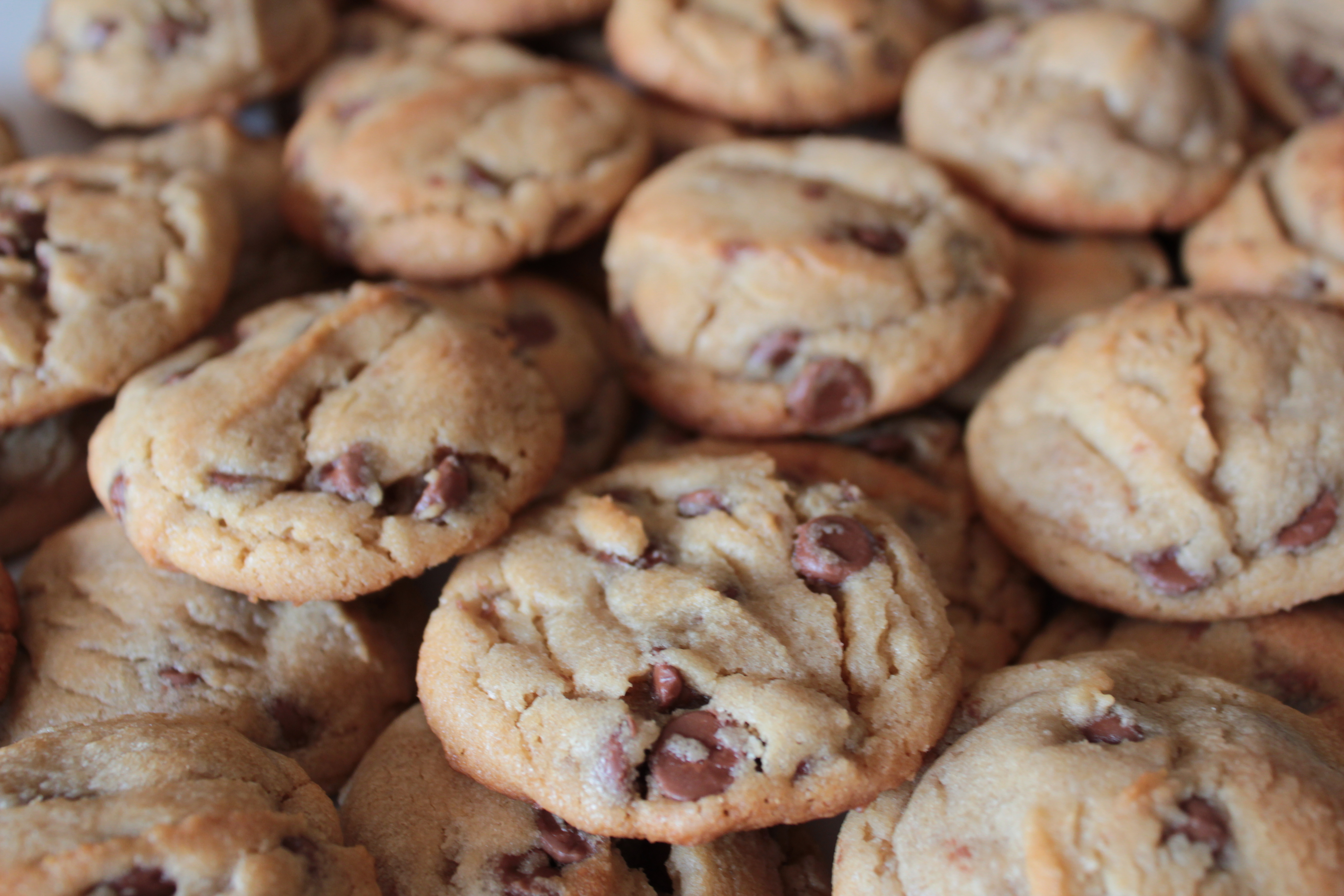... chocolate chip cookies chewy peanut butter chocolate chip cookies